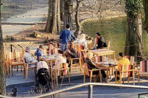 Terrace Restaurant Park Nature Trees Lake People